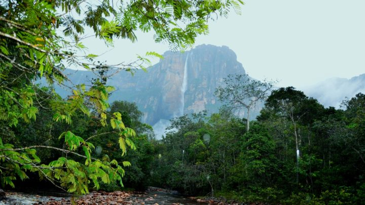 Venezuela ultima frontiera – Le cascate del paradiso