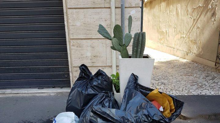 Misterbianco: Continua la lotta a chi abbandona  i rifiuti per strada  Individuati e multati con le foto trappole altri trasgressori.