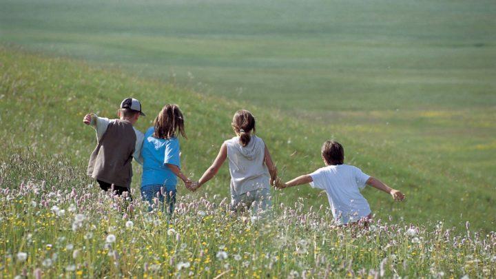 Si può insegnare ai bambini l'ecologia?