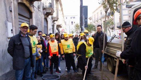 """Progetto 100 alberi per Catania"""""""