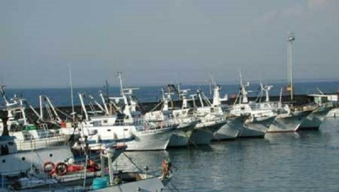 """Le Piccole e Medie Imprese del settore Pesca rischiano di """"scomparire"""" entro l'anno 2020 – Richiesta di interventi seri e concreti."""