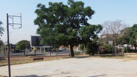 """Comitato """"Terranostra"""" sulle possibilità di riqualificare il parco Lizzio e la vicina bambinopoli a Catania"""