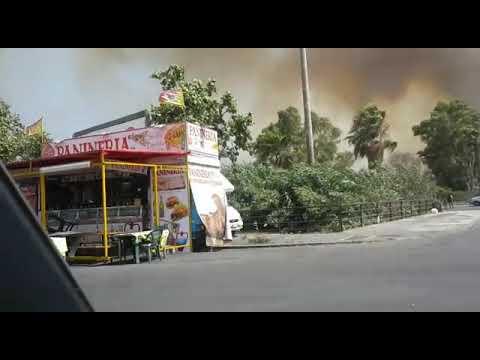 Chi pagherà i danni causati dall'incendio avvenuto alla Plaia? CONSITALIA presenta un esposto in Procura