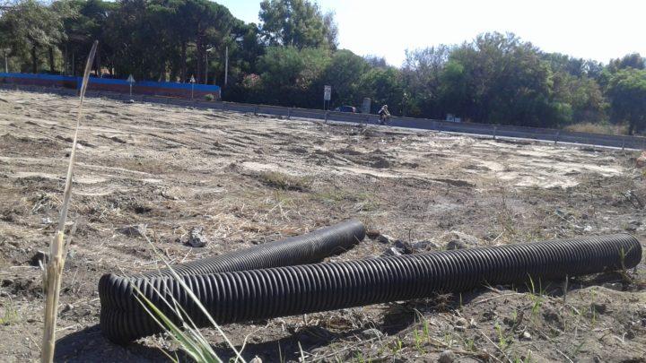 Il polmone verde della città di Catania abbandonato da tutti. Richiesta di intervento