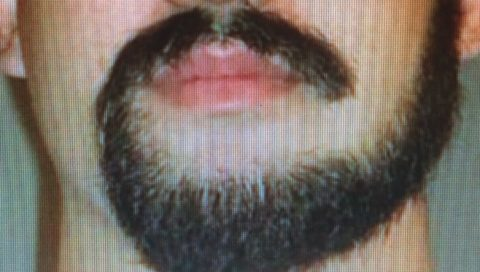 Novità moda inverno 2021: la barba a forma di coda di scimmia (con pirogallo e pirogallina)