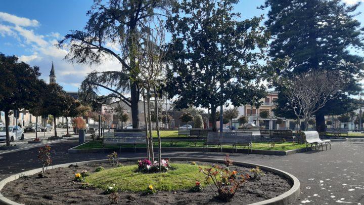 """Orto urbano alla Civita di Catania: il progetto """"green"""" ideato da 5 studenti del Liceo classico Cutelli (e premiato da Dusty)"""