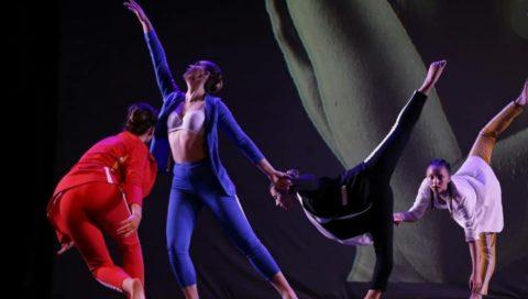 La danza, l'arte e la cultura: connubio di vita.