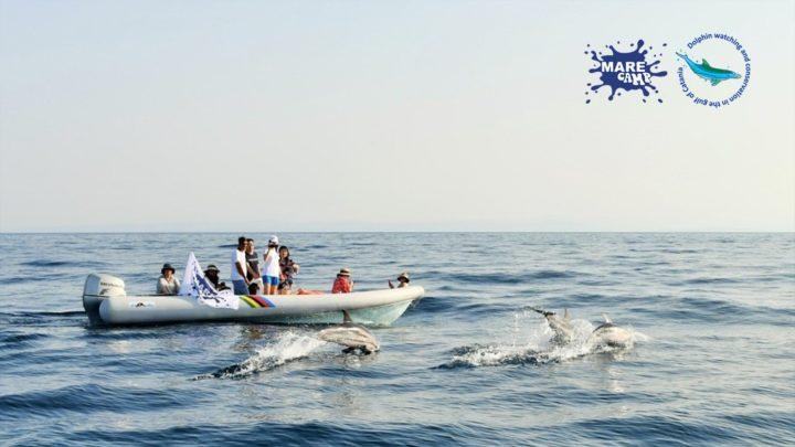 """Catania: Sensibilizzare i giovani alla tutela del mare: ultimi due giorni per votare il Contest """"Generazione Blu."""""""