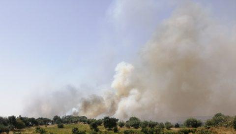 Emergenza incendiooggia Fossacreta e rischio fiamme in molti altri quartieri a Catania, il comitato Romolo Murri chiede soluzioni adeguate