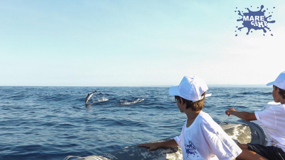 """Ambiente: Giovani """"Ambasciatori"""" del mare avvistano cetacei nel Golfo di Catania."""