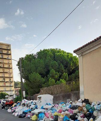 """Assessore Cantarella chi decide quale vie devono essere liberate dalla spazzatura?"""""""